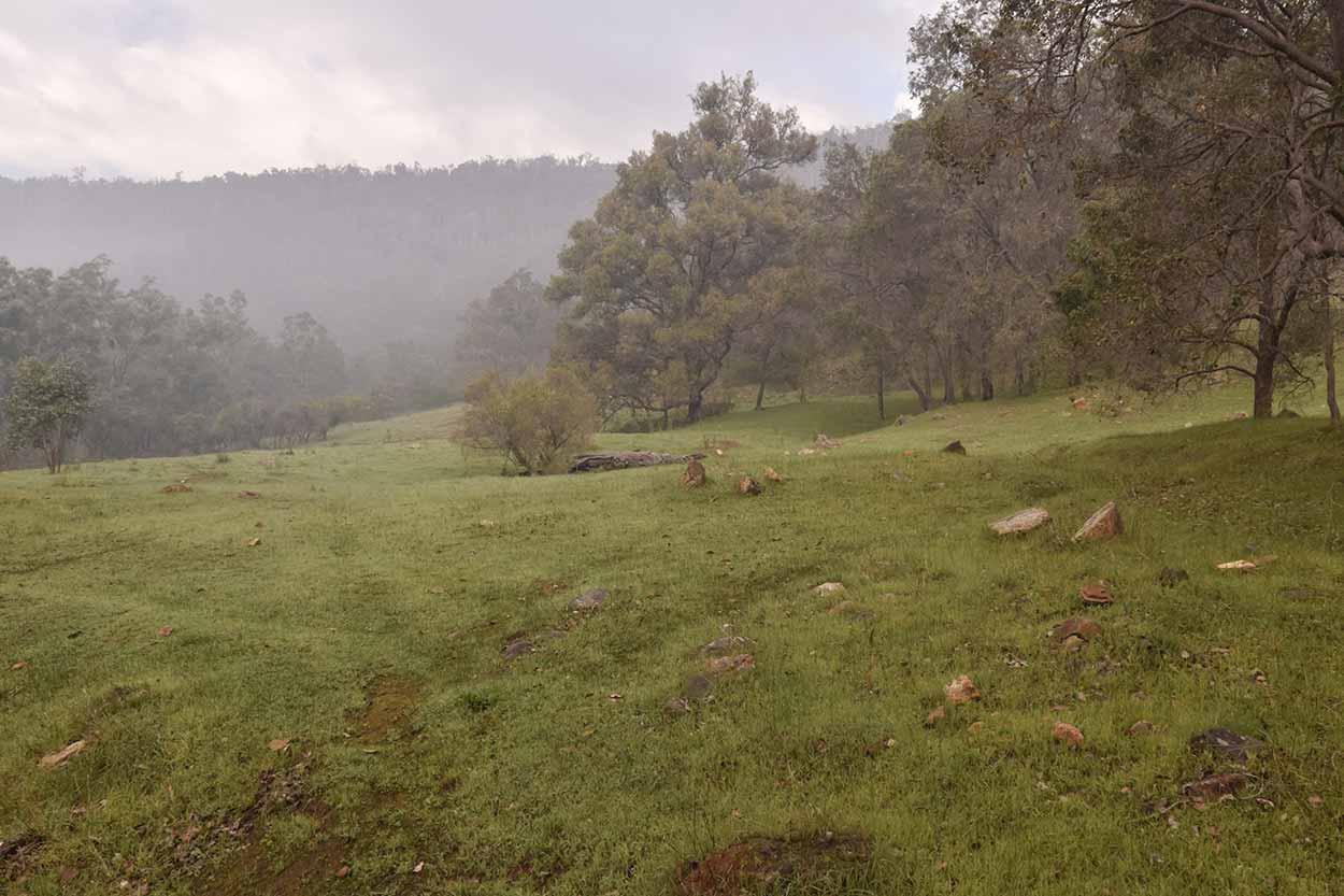 Smoky bushland and paddock, Wungong Regional Park, Perth, Western Australia