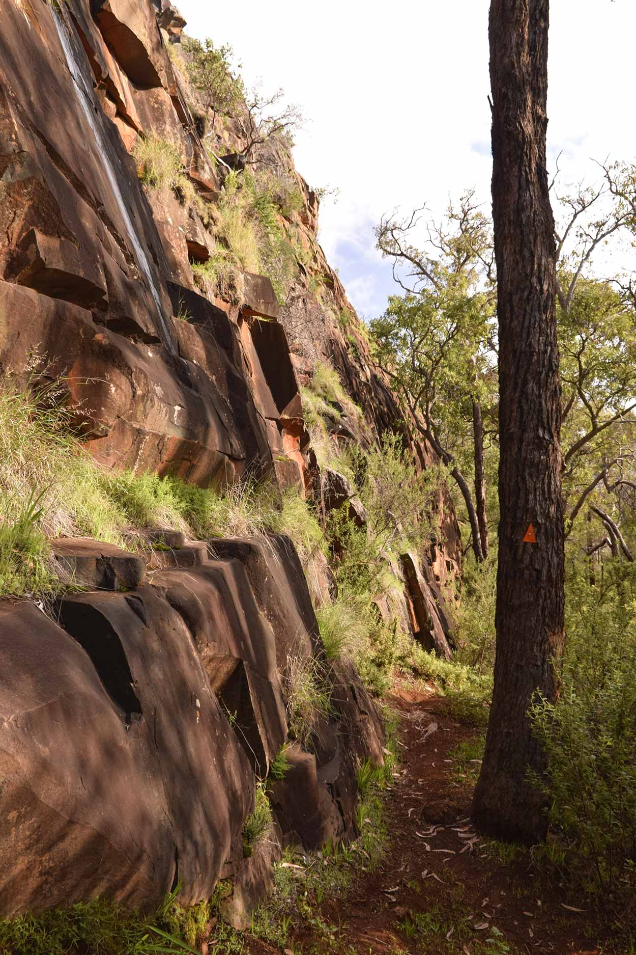 The cliff face on the Echidna Trail, Wungong Regional Park, Perth, Western Australia