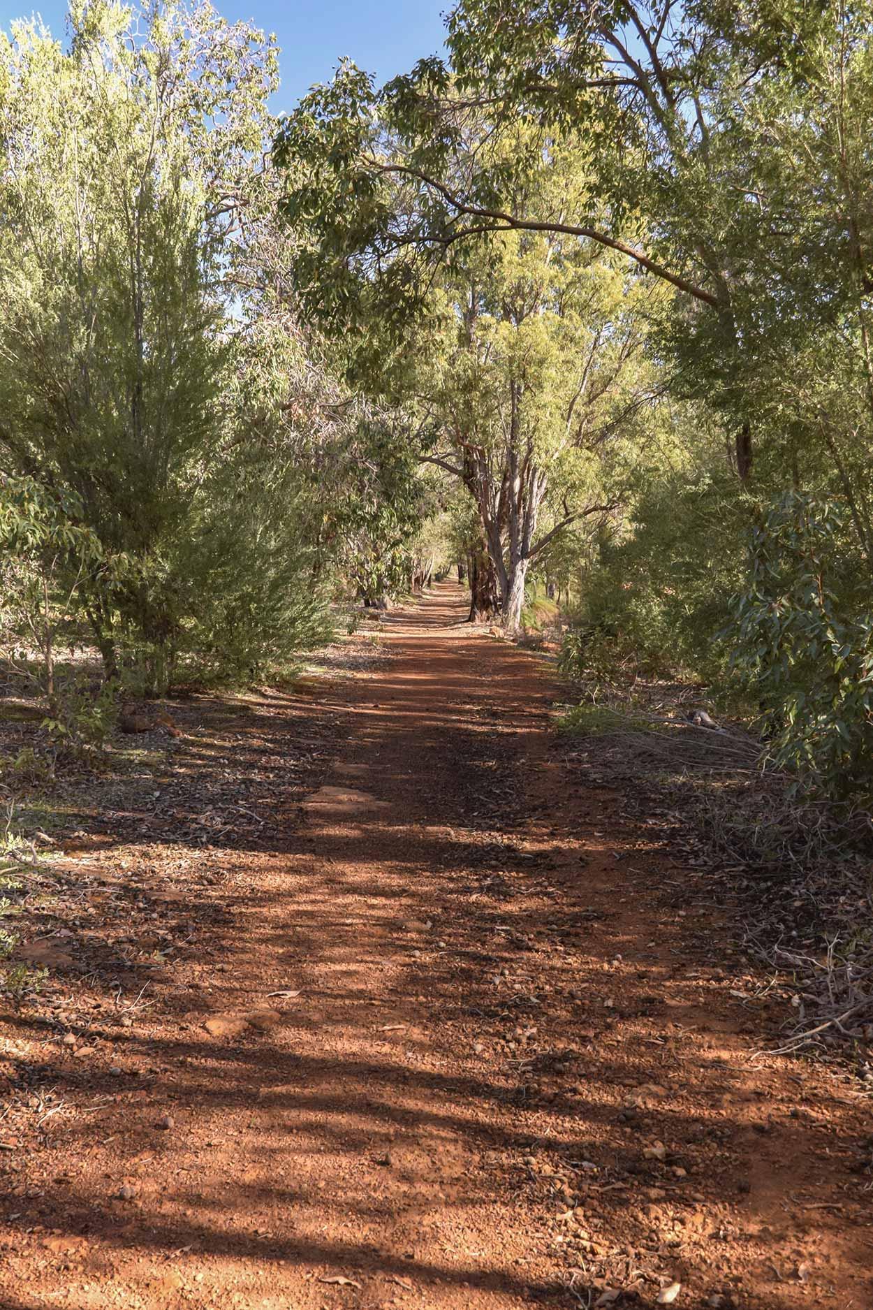 Walking in Churchman's, Wungong Regional Park, Perth, Western Australia