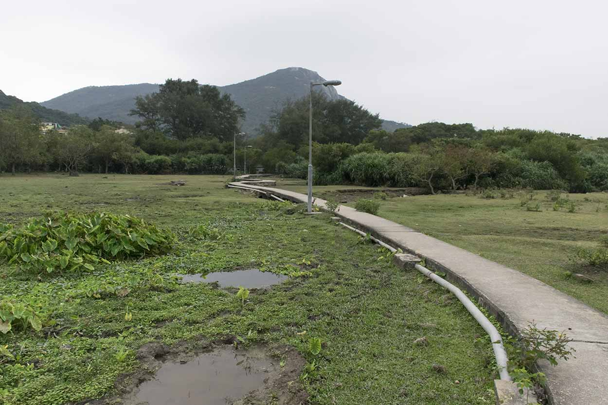 A winding concrete path through the fields, Ham Tin, Lantau Island, Hong Kong, China