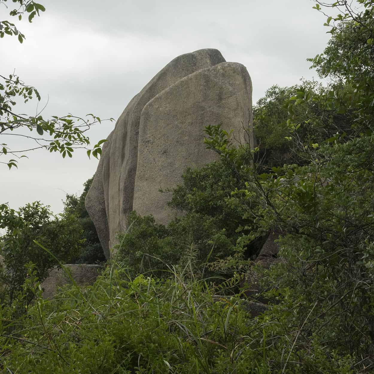 A boulder rises above the greenery, Chi Ma Wan Country Trail, Lantau Island, Hong Kong, China