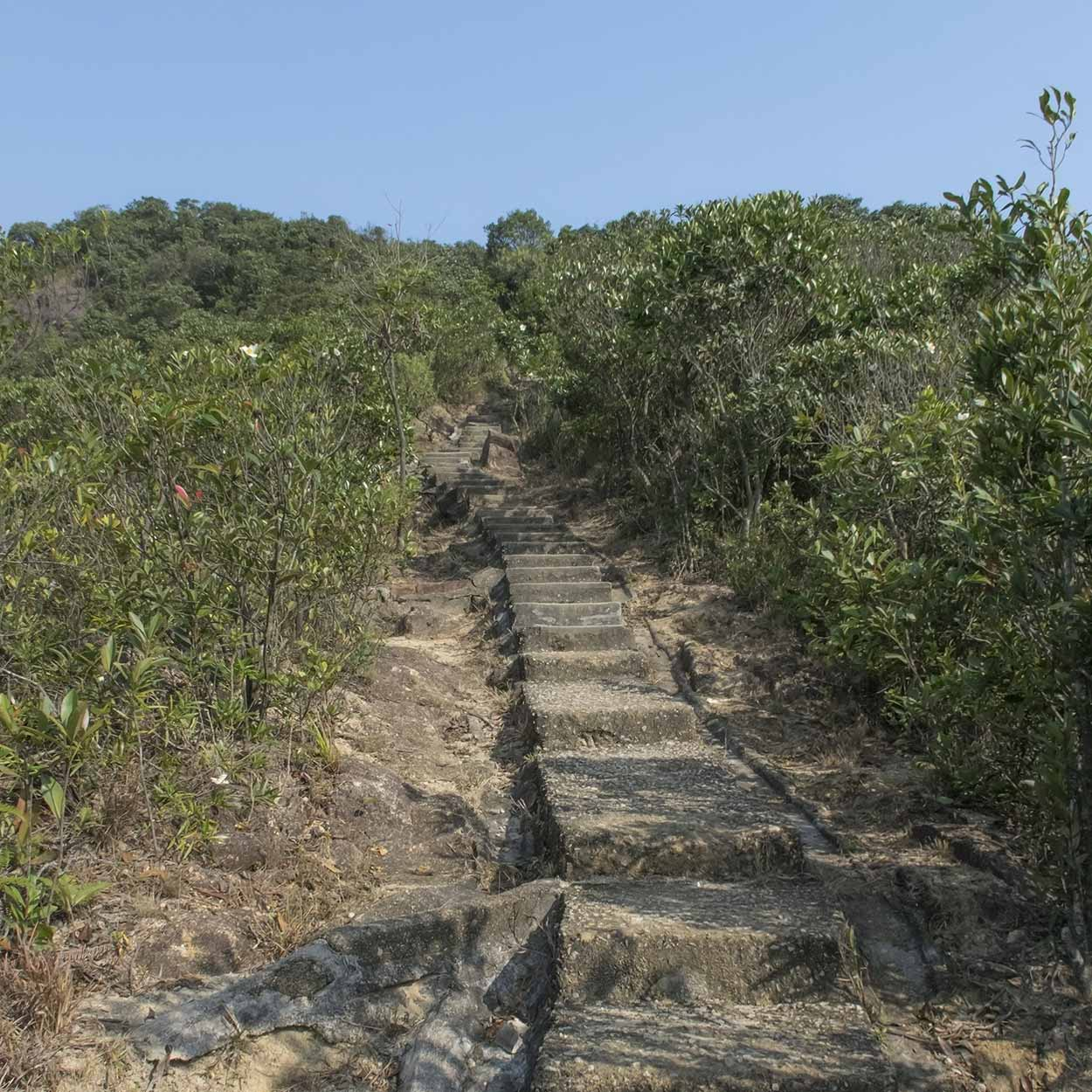 The climb to Jardine's Lookout, Hong Kong Trail Section 5, China