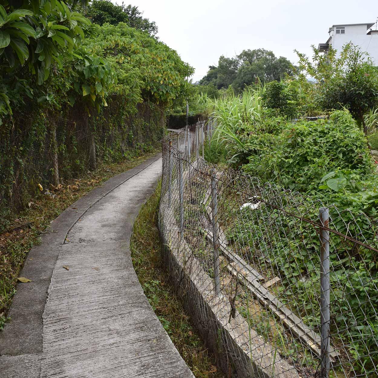Walking to Tung Kok Wai, Lung Yeuk Tau Heritage Trail, Hong Kong, China
