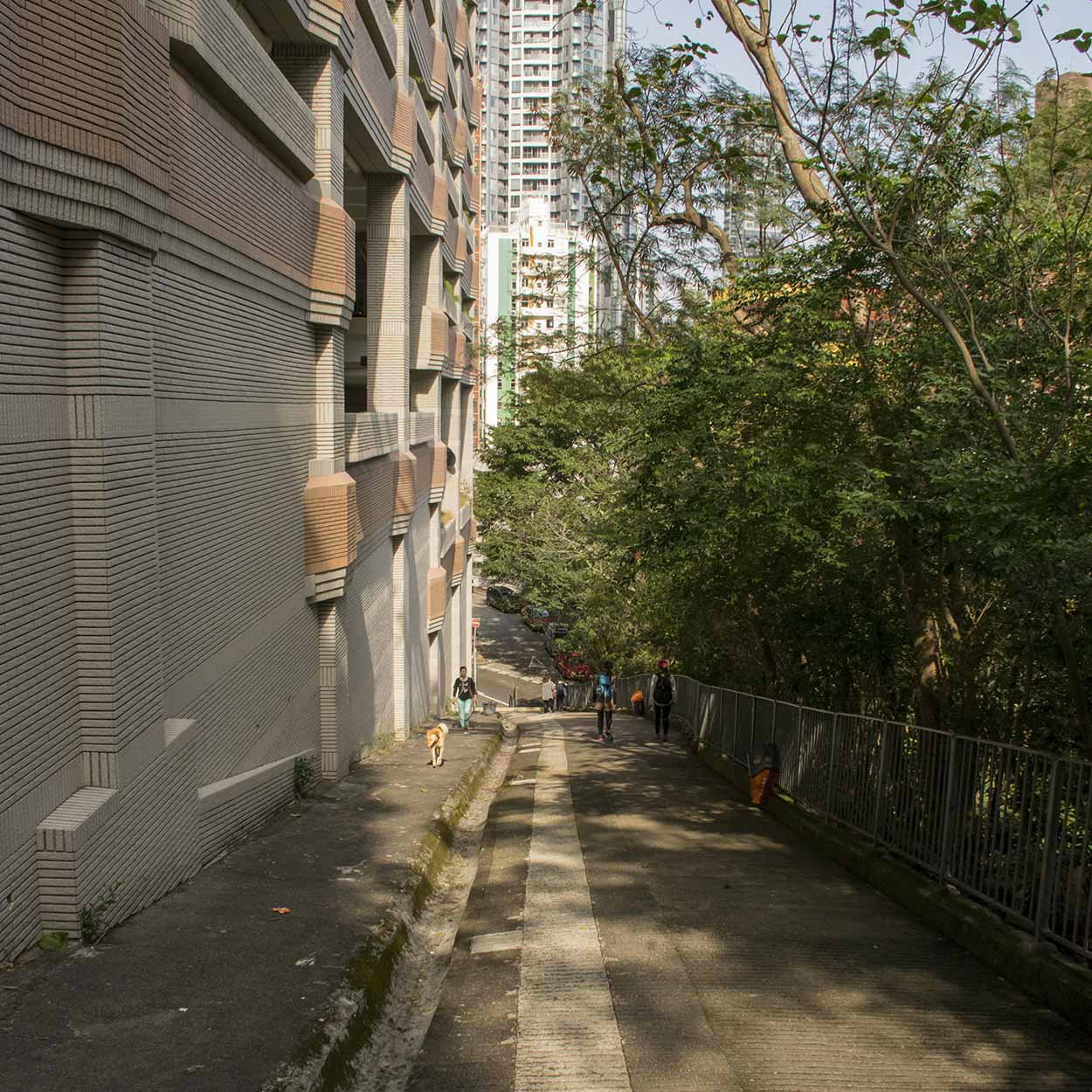 Looking down the Wan Chai Green Trail to Kennedy Road, Hong Kong, China