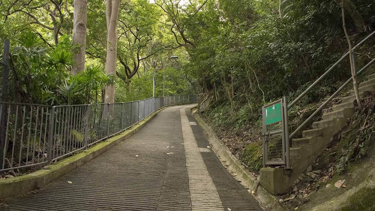 Walking up the Wan Chai Green Trail, Hong Kong, China