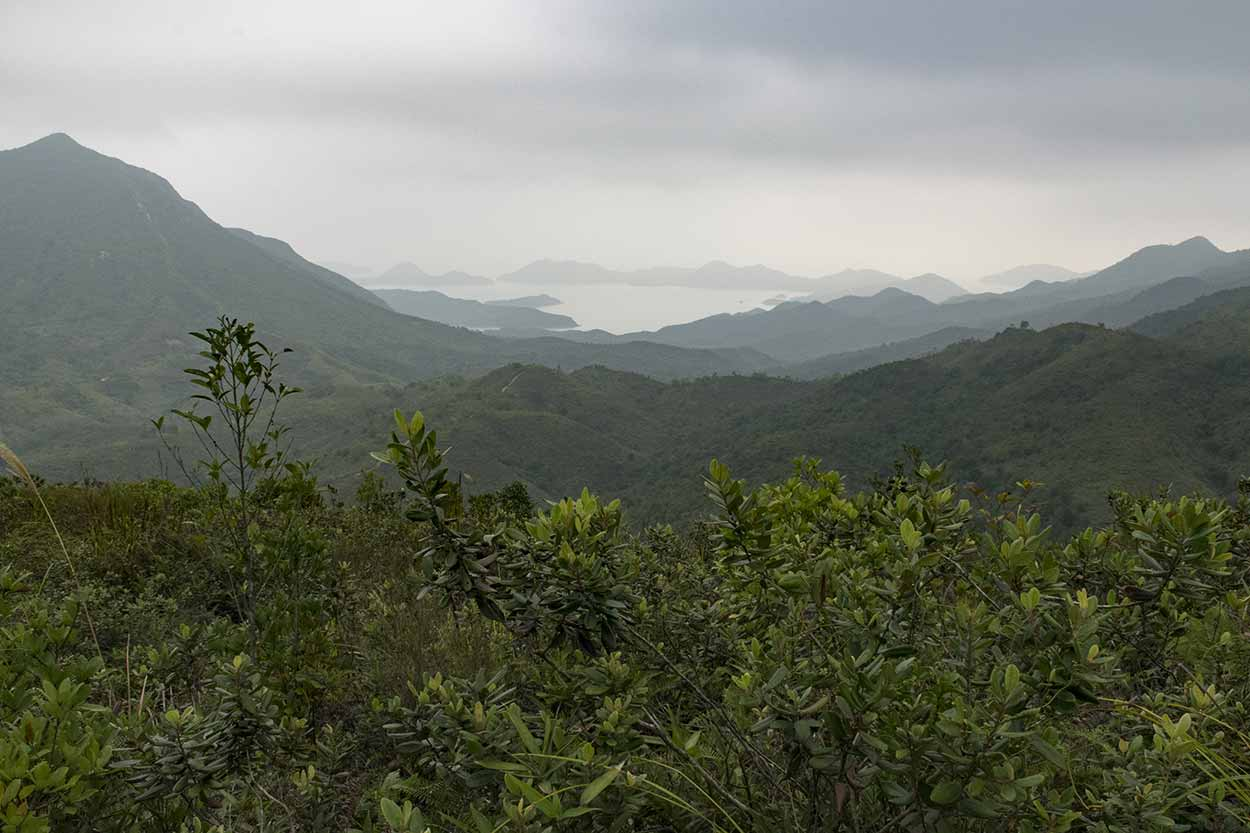 Views to the east of the park, Plover Cove Reservoir Country Trail, Hong Kong, China