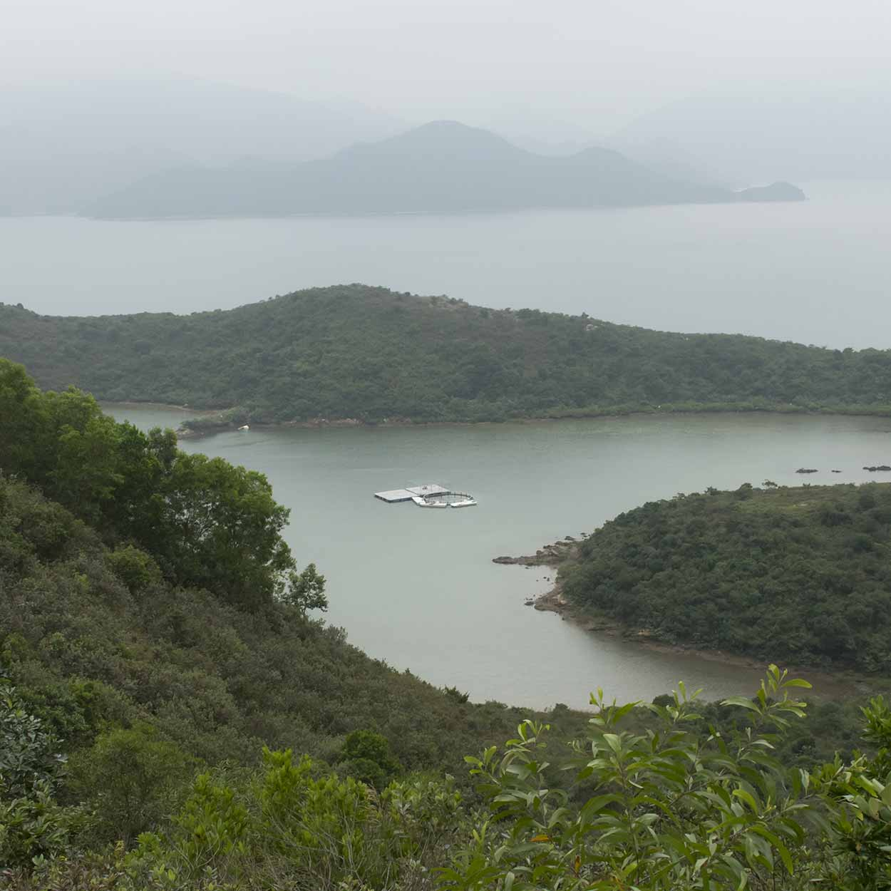Views to the Tolo Channel, Plover Cove Reservoir Country Trail, Hong Kong, China