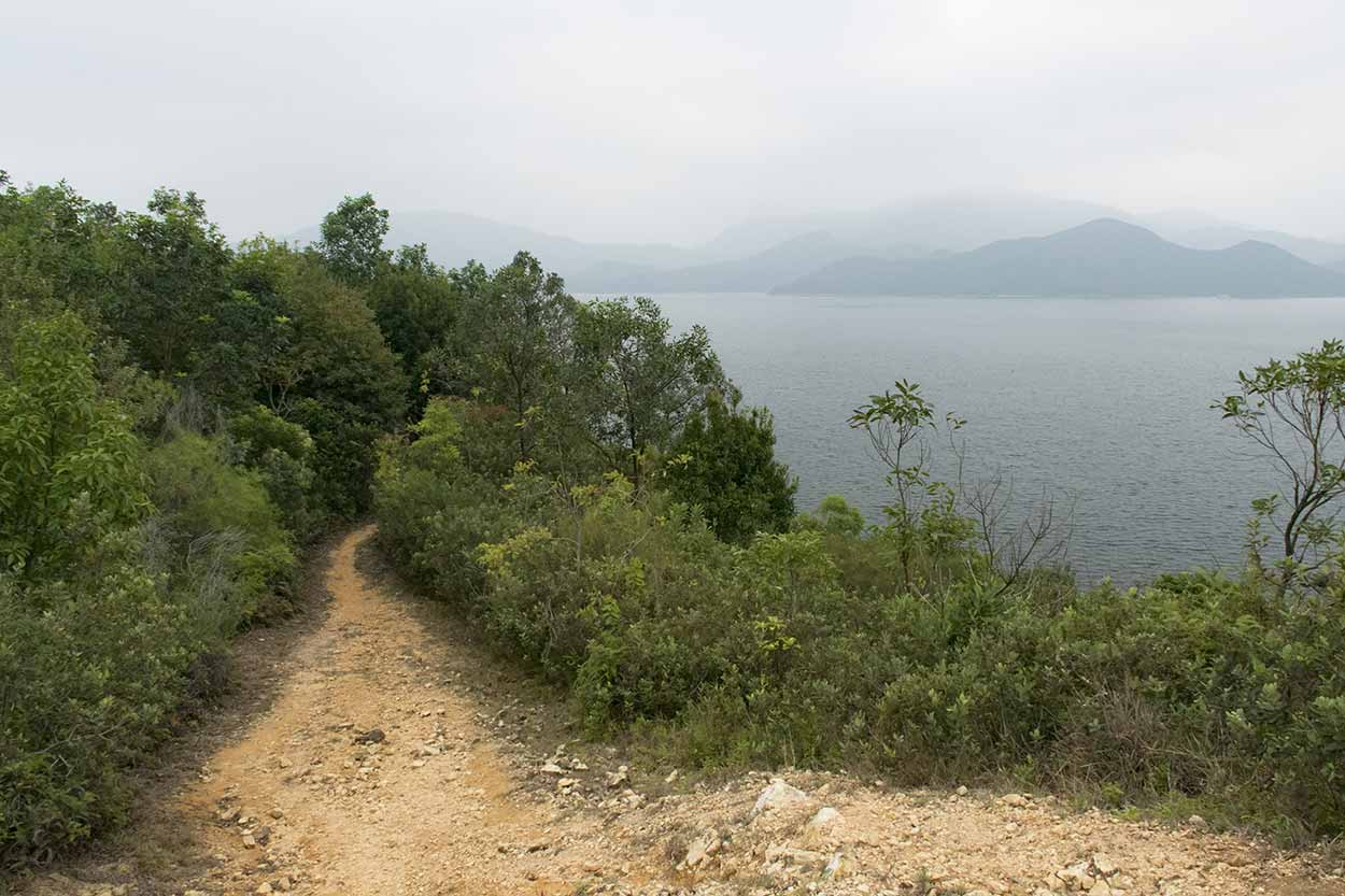 A walk in the park, Plover Cove Reservoir Country Trail, Hong Kong, China