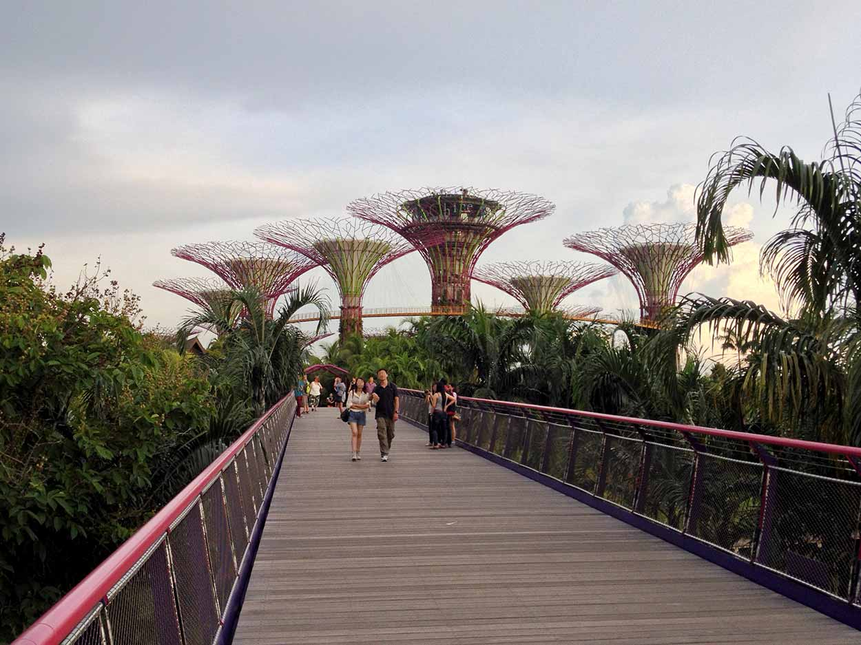 Walking over the Dragonfly Bridge towards Supertree Grove and the OCBC Skyway, Gardens by the Bay, Singapore