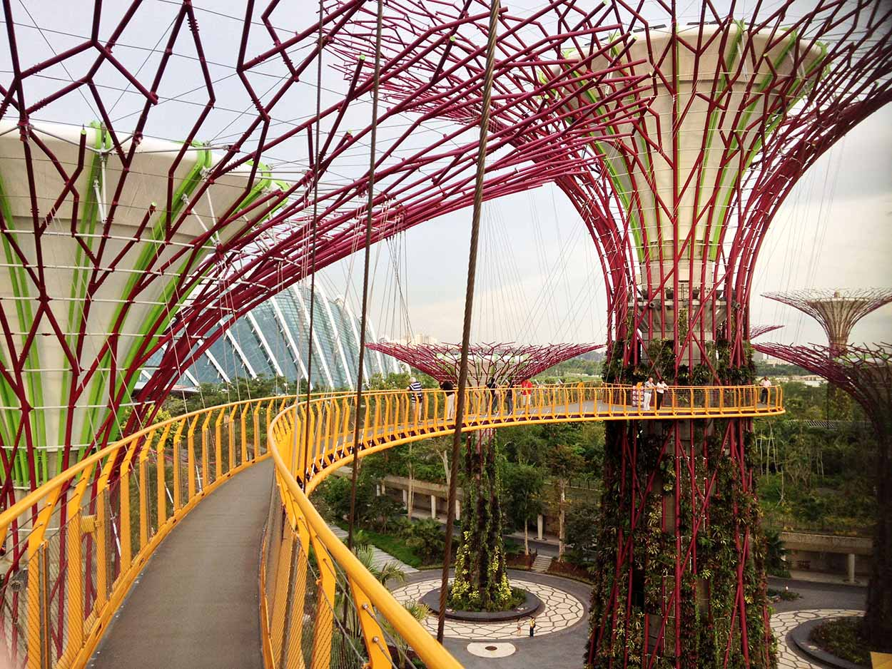 Walking along the OCBC Skyway suspended amongst Supertree Grove, Gardens by the Bay, Singapore