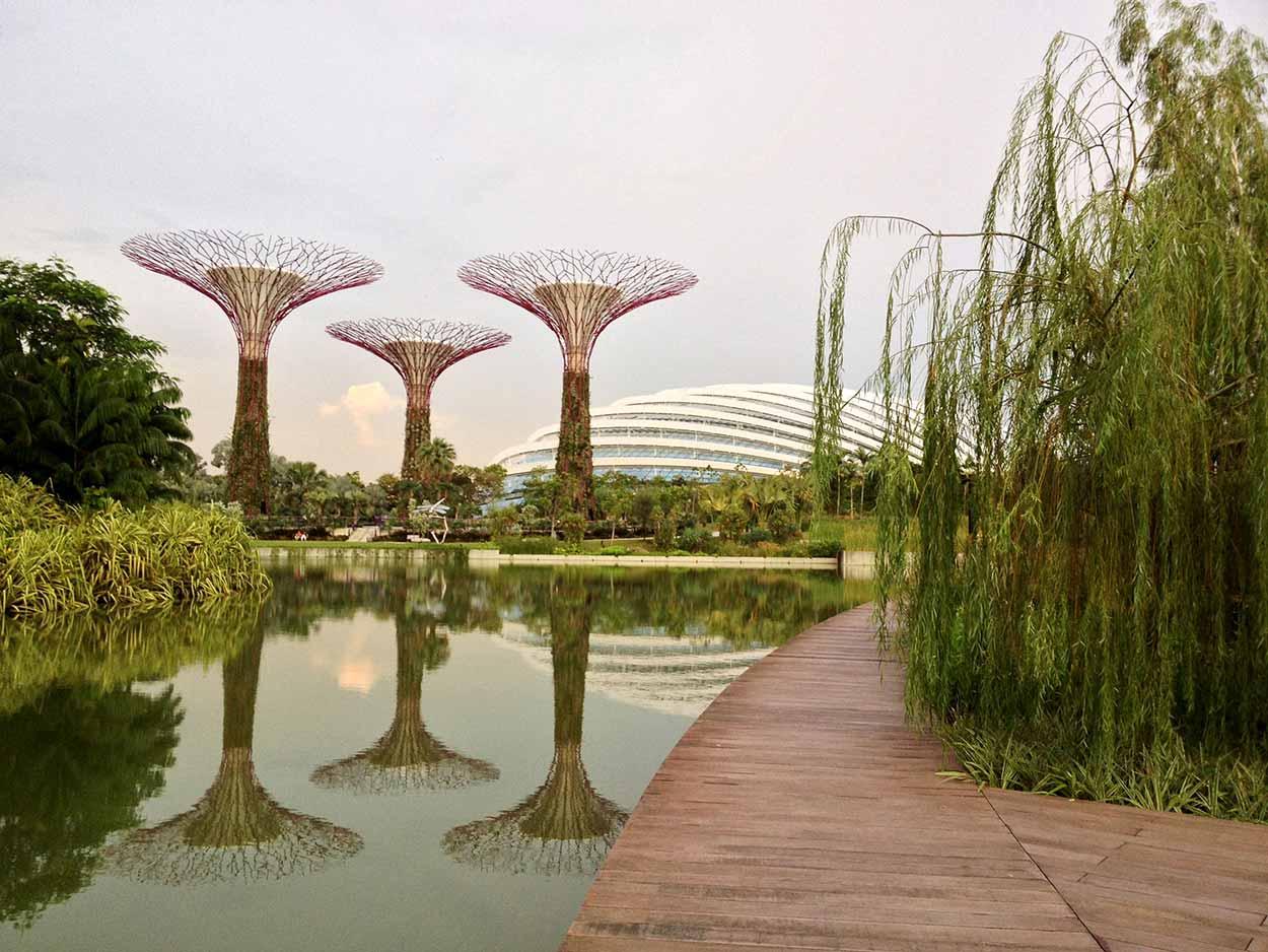 Boardwalk along Dragonfly Lake, Gardens by the Bay, Singapore
