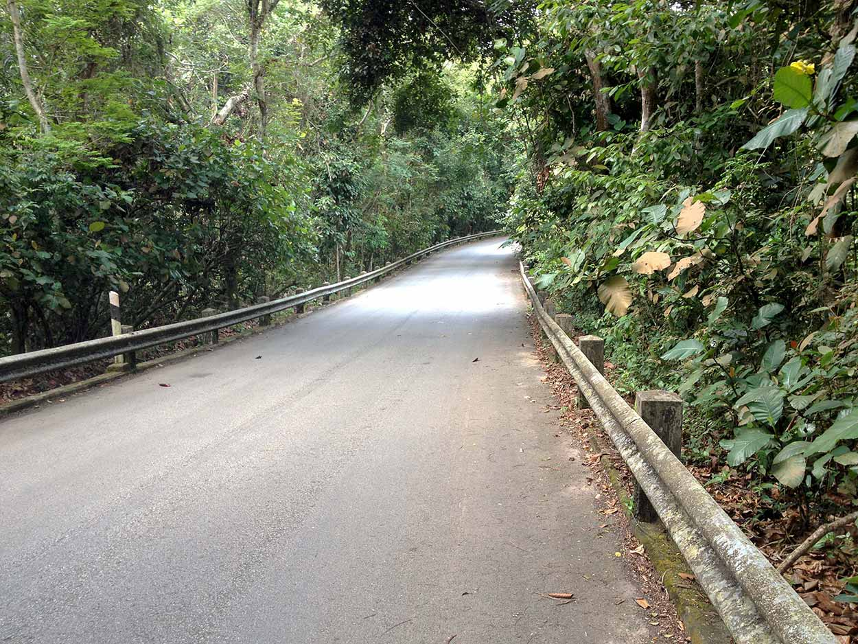 Rifle Range Road, Kampong Trail, Singapore