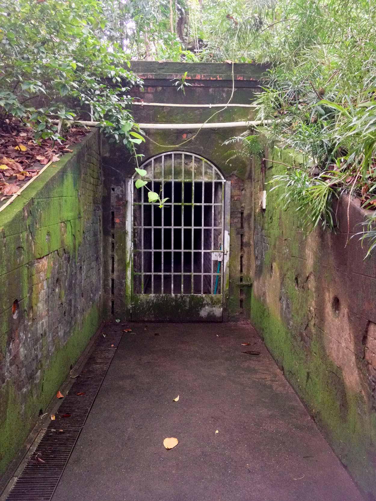 Unfortunately the tunnels under Labrador Nature Reserve are locked up, Labrador Nature Reserve, Singapore