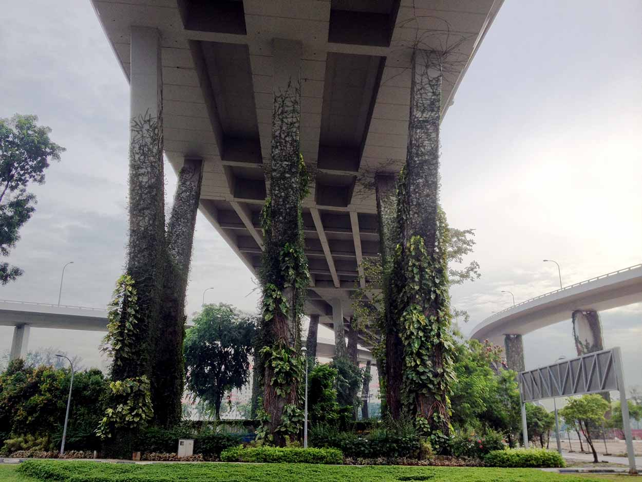 Jungle vines creeping their way up the pylons of raised highways on my way to the Singapore Flyer, Singapore