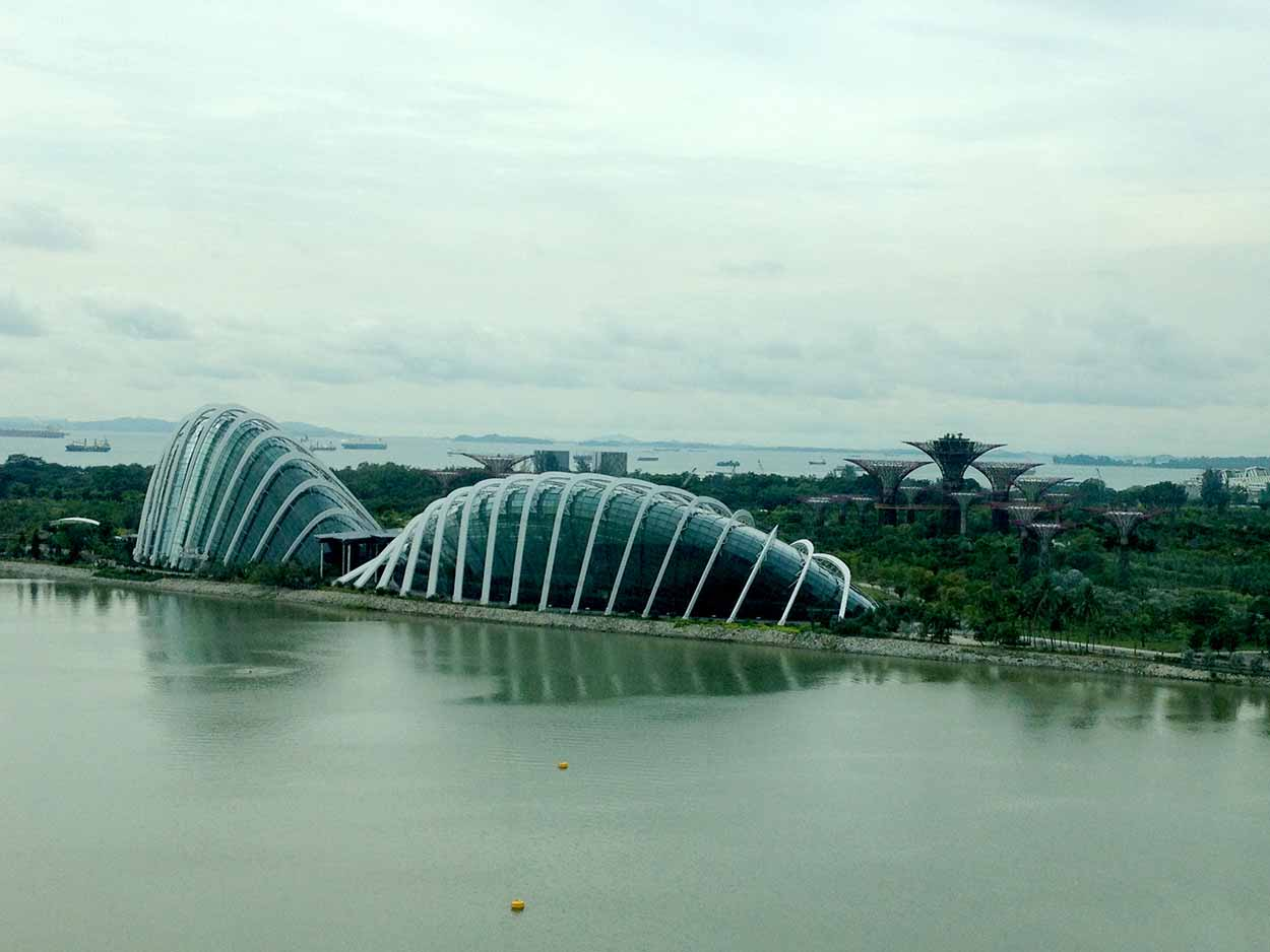 Gardens by the Bay as viewed from my own personal capsule of the Singapore Flyer, Singapore